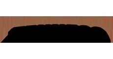 Logo Tenneco