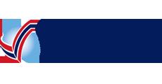 Vipal Logo